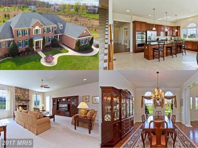 Glenelg Single Family Home For Sale: 14223 Meadow Lake Drive