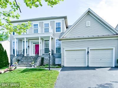 Elkridge Single Family Home For Sale: 6025 Toomey Lane
