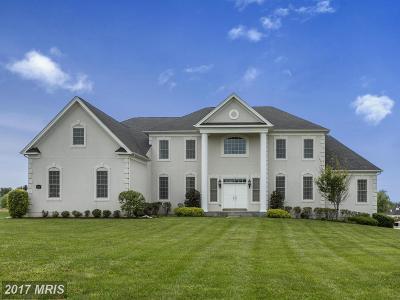 Glenelg Single Family Home For Sale: 14525 Edgewoods Way