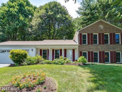 Ellicott City Single Family Home For Sale: 3720 Font Hill Drive