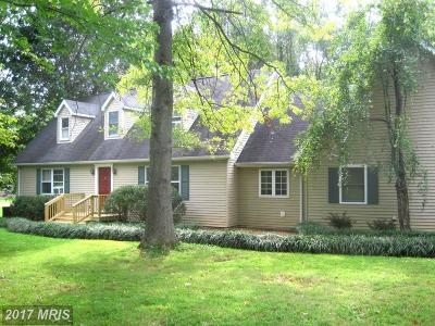 Charles Town Single Family Home For Sale: 447 Duncan Field Lane