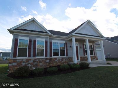 Charles Town Single Family Home For Sale: 264 Burberry Lane