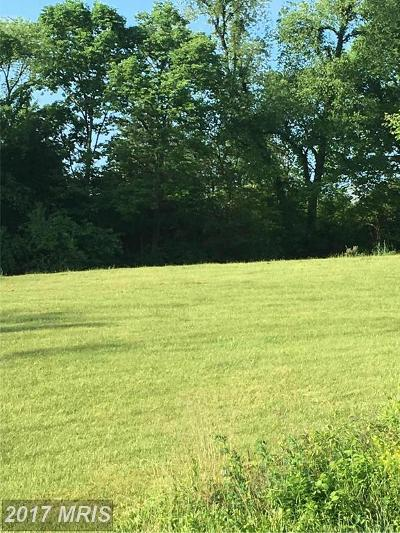 Shepherdstown Residential Lots & Land For Sale: Rt 45