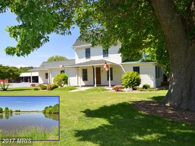 Rock Hall Farm For Sale: 6542 Rock Hall Road