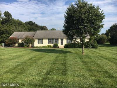 Kent Single Family Home For Sale: 8473 Broad Neck Road