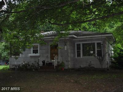 Rock Hall Single Family Home For Sale: 5228 Skinners Neck Road