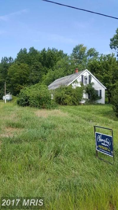 Chestertown Single Family Home For Sale: 10252 Fairlee Road