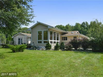 Chestertown Single Family Home For Sale: 10202 John Carvill Road