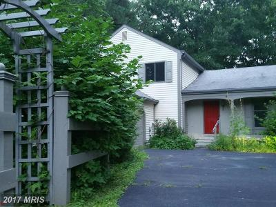 Chestertown Single Family Home For Sale: 209 Birch Run Road