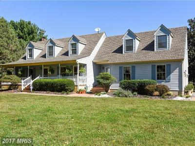 Worton Single Family Home For Sale: 12623 Walnut Valley Court
