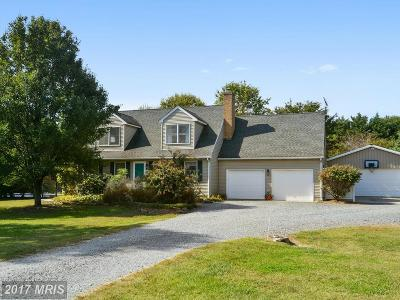 Chestertown Single Family Home For Sale: 10310 Hanesville Road