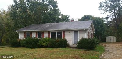 Chestertown Single Family Home For Sale: 303 Roosevelt Drive