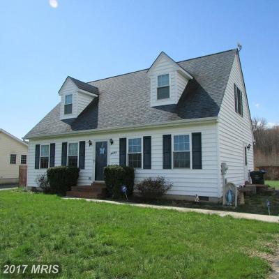 Worton Single Family Home For Sale: 25151 Smithville Rd.
