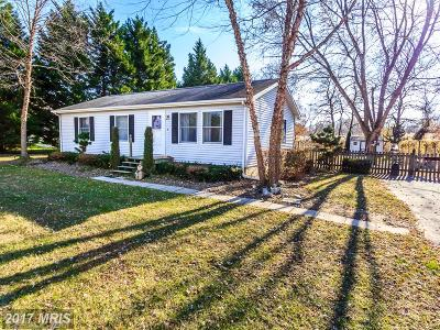 Chestertown Single Family Home For Sale: 10767 Carimon Road