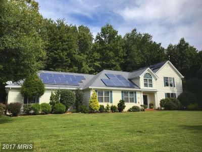 Chestertown Single Family Home For Sale: 22400 Great Oak Landing Road