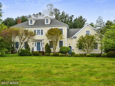 Chestertown Single Family Home For Sale: 7968 Aldan Drive