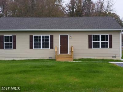 Chestertown Single Family Home For Sale: 7500 Shortall Street