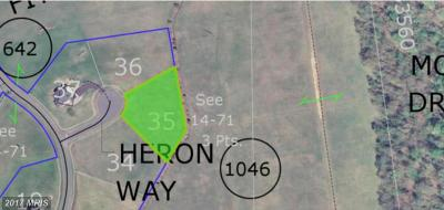 Residential Lots & Land For Sale: Heron Way Lot 35