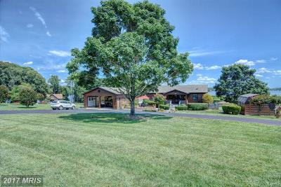 Single Family Home For Sale: 1036 Windway Lane