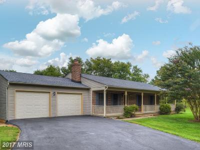 Single Family Home For Sale: 40 Cedar Court
