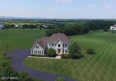 Lovettsville Single Family Home For Sale: 13302 Milltown Road