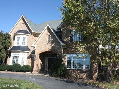 Loudoun Single Family Home For Sale: 40182 Browns Creek Place