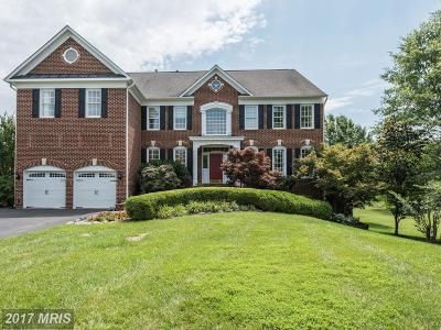 Ashburn Single Family Home For Sale: 21922 Hyde Park Drive