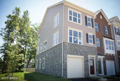 Purcellville Townhouse For Sale: 301 Upper Brook Terrace