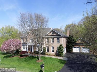 Great Falls, Dulles, Potomac Falls, Sterling Single Family Home For Sale: 11364 Jackrabbit Court