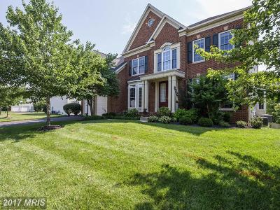 Chantilly Single Family Home For Sale: 25766 Tullow Place