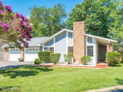 Loudoun Single Family Home For Sale: 18 Thrush Road