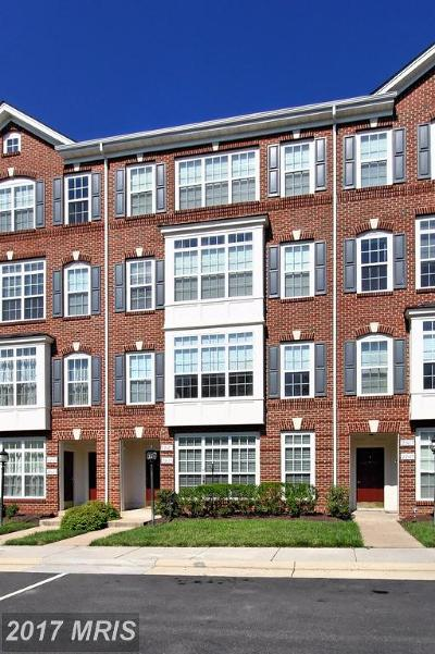 Ashburn Condo For Sale: 22619 Settlers Trail Terrace #1C