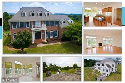 Lovettsville Single Family Home For Sale: 11500 Potomac Heights Lane