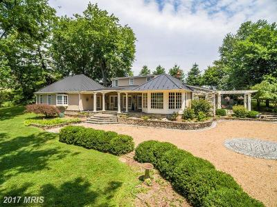 Bluemont, Paris, Middleburg, Upperville, Hamilton, Hillsboro, Lovettsville, Paeonian Springs, Purcellville, Round Hill, Waterford Single Family Home For Sale: 22533 Fox Lair Lane