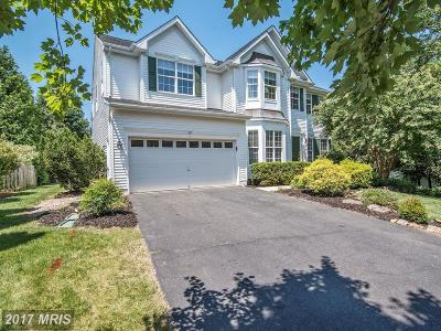 Leesburg Single Family Home For Sale: 207 Paddock Court NW