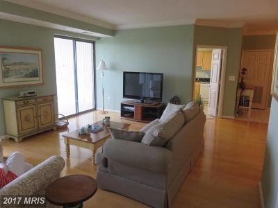 Leesburg Condo For Sale: 19355 Cypress Ridge Terrace #1110