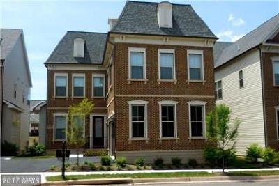 Ashburn Single Family Home For Sale: 20629 Holyoke Drive