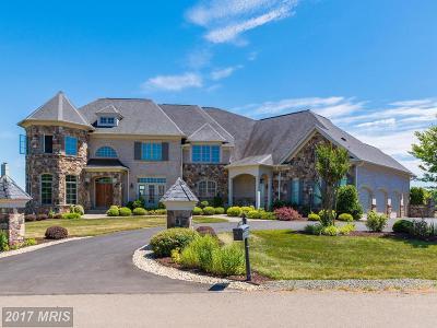Loudoun Single Family Home For Sale: 40638 Grenata Preserve Place