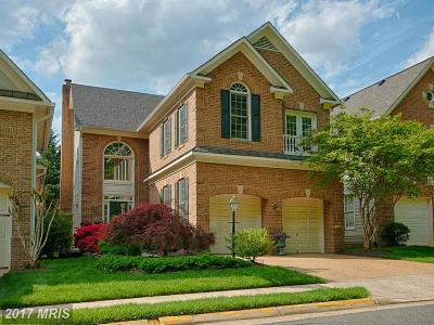 Great Falls, Dulles, Potomac Falls, Sterling Single Family Home For Sale: 20281 Island View Court