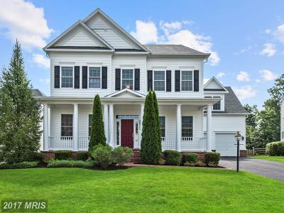 Leesburg Single Family Home For Sale: 22392 Nickman Way
