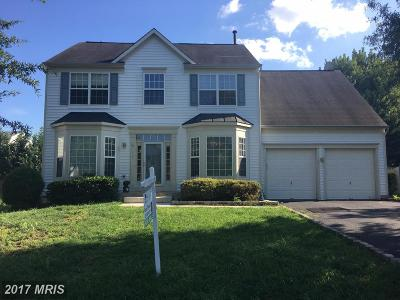 Leesburg Single Family Home For Sale: 621 Marshall Drive NE
