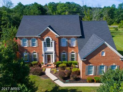 Chantilly Single Family Home For Sale: 42571 Unbridleds Song Place