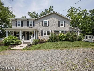 Aldie Single Family Home For Sale: 41631 Olivine Place