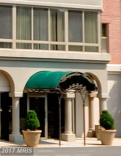 Leesburg Condo For Sale: 19350 Magnolia Grove Square #303