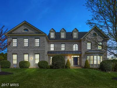 Ashburn Single Family Home For Sale: 43046 Monti Cimini Court