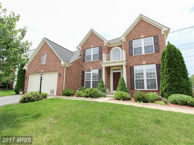 Aldie Single Family Home For Sale: 25579 Laughter Drive