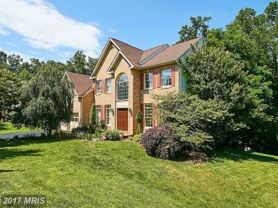 Leesburg Single Family Home For Sale: 526 Beauregard Drive SE