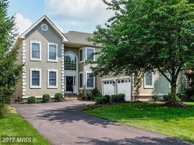 Ashburn Single Family Home For Sale: 20002 Palmer Classic Parkway