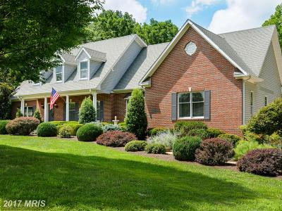 Leesburg Single Family Home For Sale: 41950 Saddlebrook Place