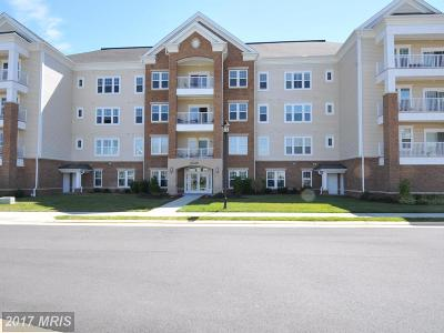 Ashburn Condo For Sale: 20610 Hope Spring Terrace #103